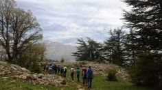 tannourine-reserve-lebanon-hiking-notesofatraveler