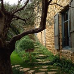 museum-garden