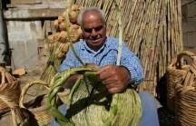 398113_img650x420_img650x420_crop