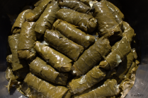 stuffed_grape_leaves_11