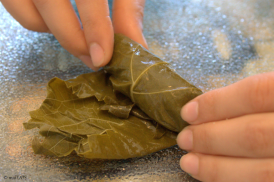 stuffed_grape_leaves_5